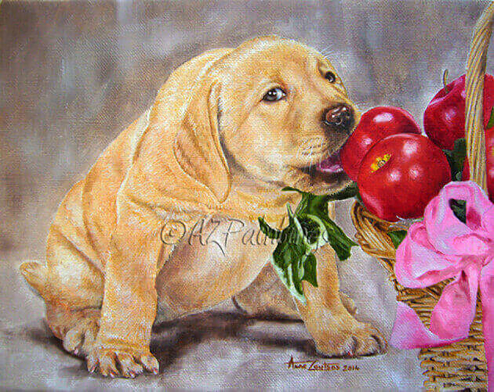 an oil painting on linen canvas of a cheeky yellow labrador puppy eating an apple from a basket