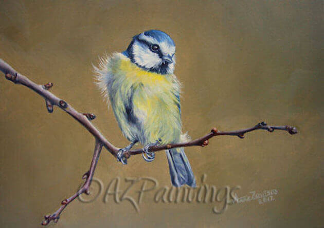 Blue Tit - an oil painting of a blue tit bird on a twig