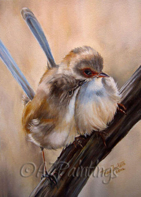 Fairy Wrens Kiss oil painting