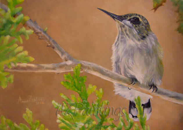Hummingbird - an original oil painting