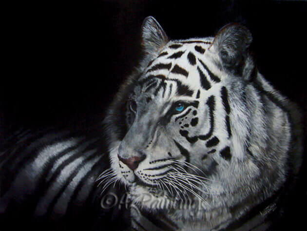 The Tiger - an oil painting of a white tiger with vivid blue eyes
