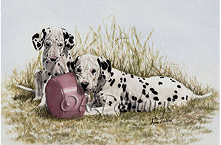 Two Dalmatian puppies play with their food bowl