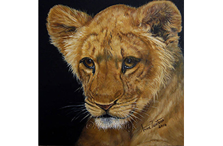 Hair Apparent - an oil painting of a young lion